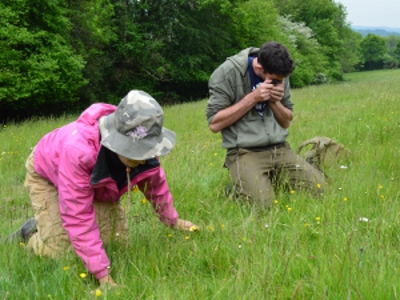 Meadows Surveys search for precious new habitats