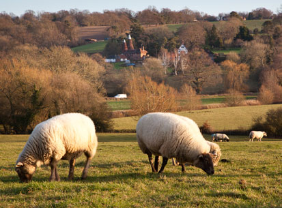 Prince's Farm Resilience Programme comes to the High Weald