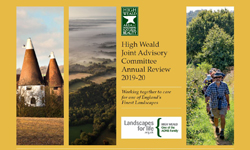 Annual Review 2019/2020 - A year in the High Weald