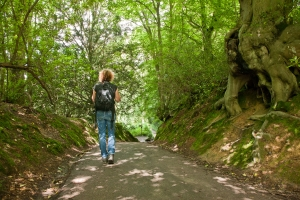 Create your self-guided High Weald Walking Festival