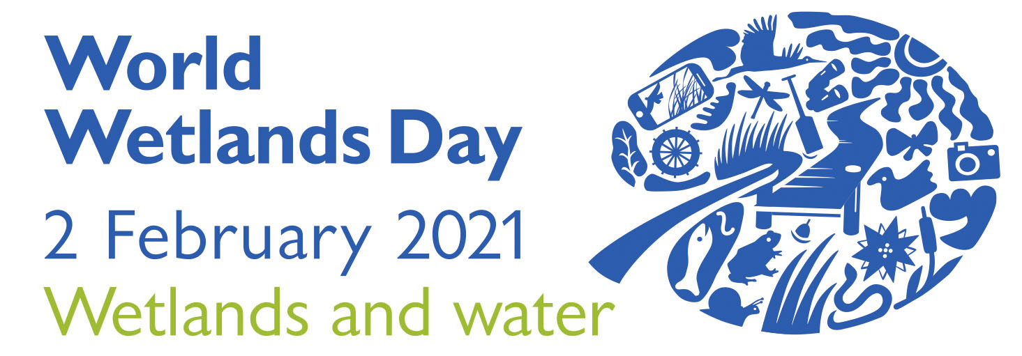 World Wetlands Day: Learn about the special habitats of the High Weald