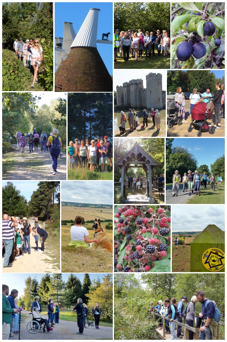 High Weald Walking Festival in pictures