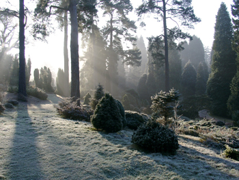 Explore the High Weald this winter