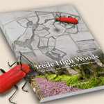 Brede High Woods - a wild story
