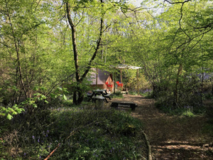 Glamping at Wild Boar Wood campsite5