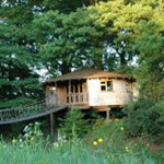 Wadhurst tree house holiday