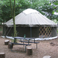 Sussex yurt camping