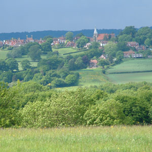 High Weald's natural beauty