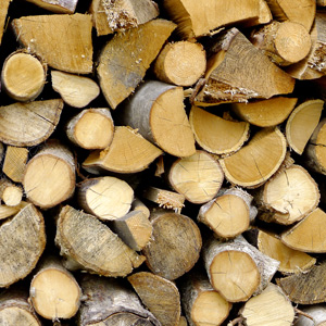 Using wood as a fuel