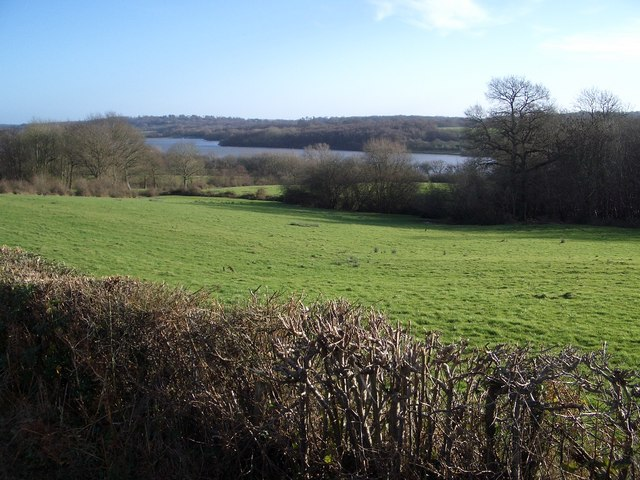 darwell_res