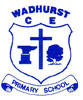 Wadhurst CE Primary School