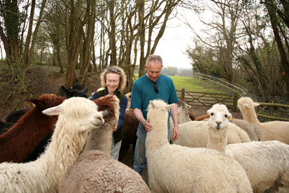 Vicky & Chris Agar, Spring Farm Alpacas